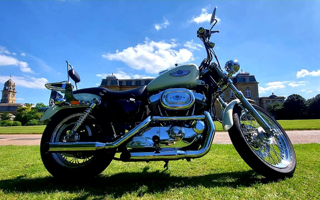 2003 HARLEY DAVIDSON SPORTSTER HUGGER 100th ANNIVERSARY EDITION ONLY 3071 MILES!